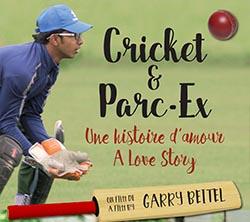14-cricket